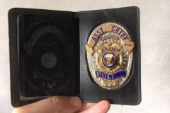 Badge in Wallet